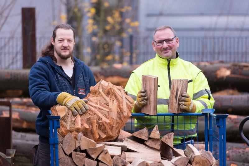 Brennholz gegen die Winterkälte